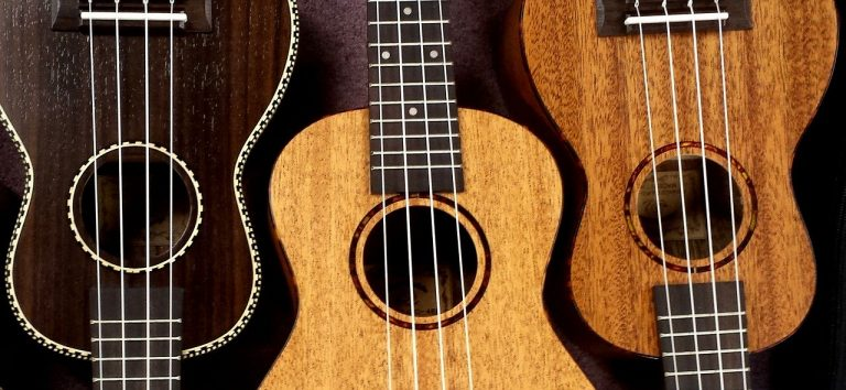 Home Ukulele Brands