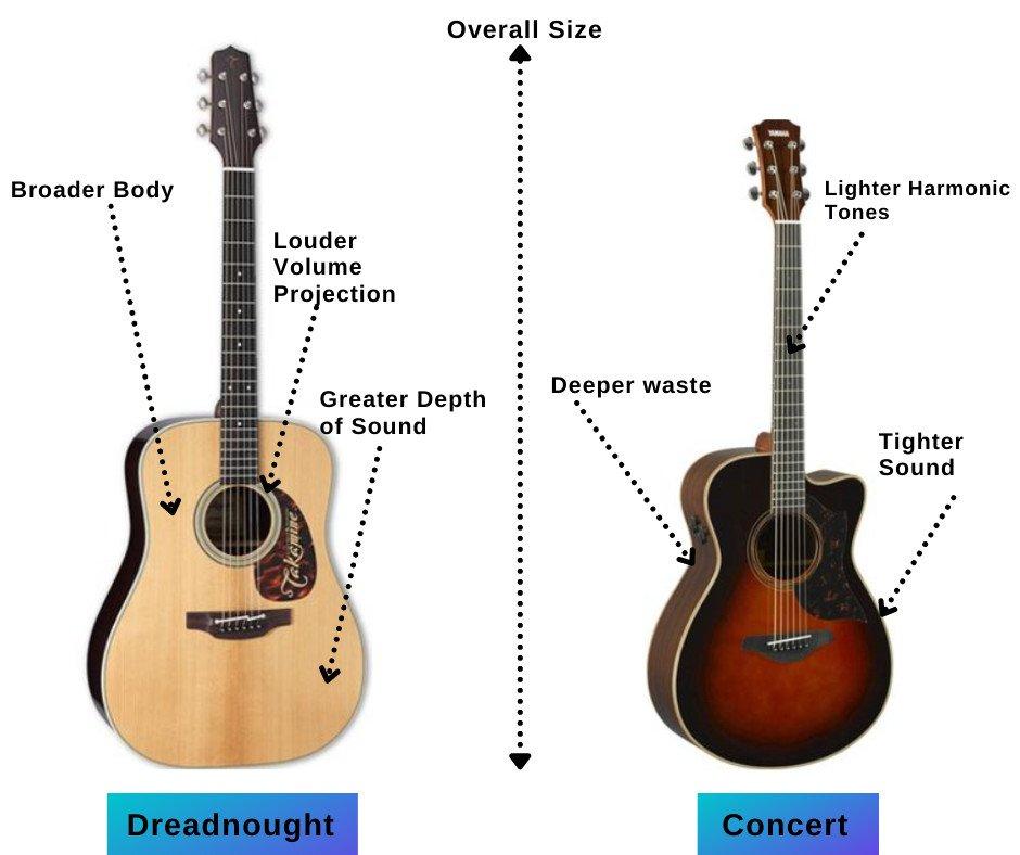 martin and taylor guitars shape
